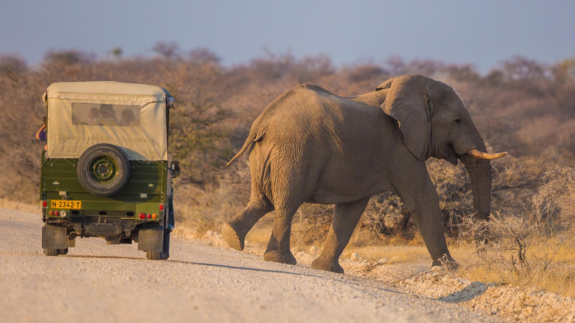 Namibia-61-e1424793573309